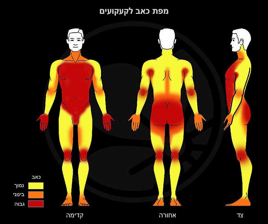 men tattoo painful areas chart