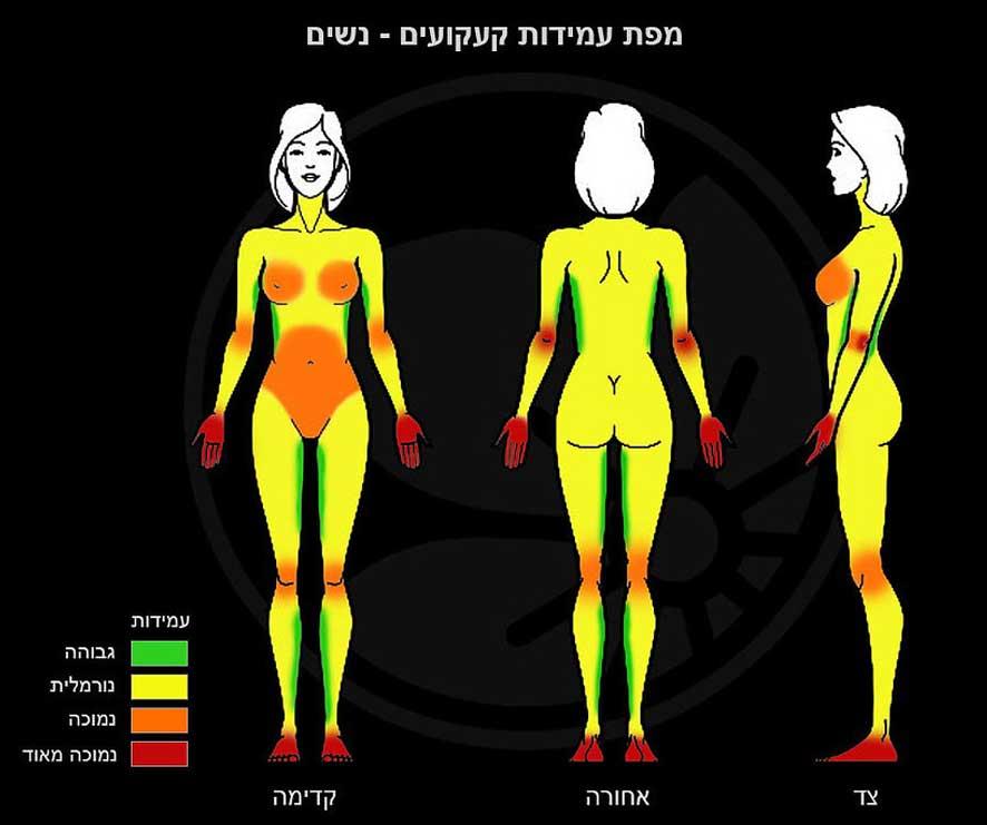 women tattoo pain tolerance chart